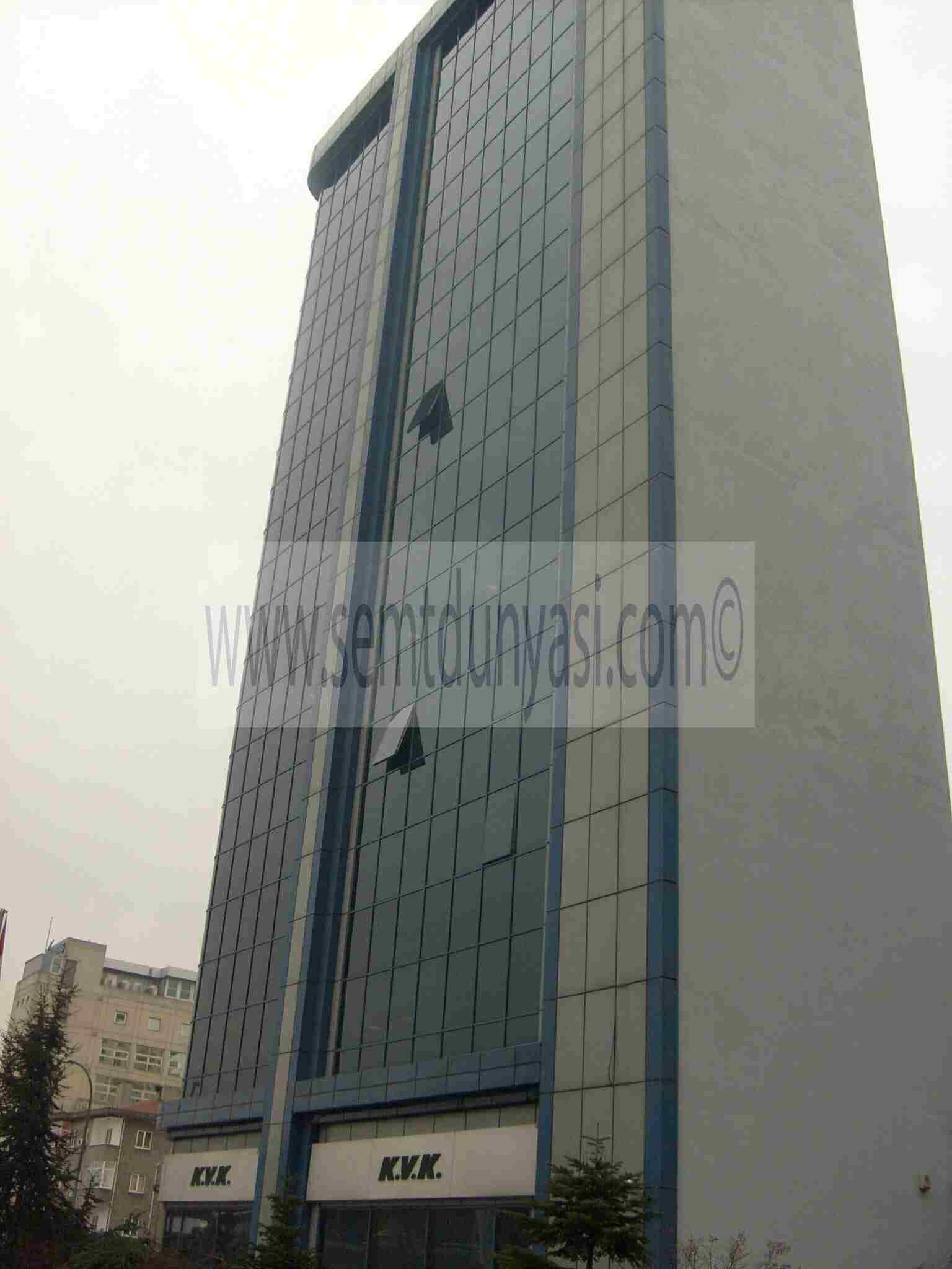 Bina resmi